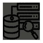 BI Analytics | Nethex