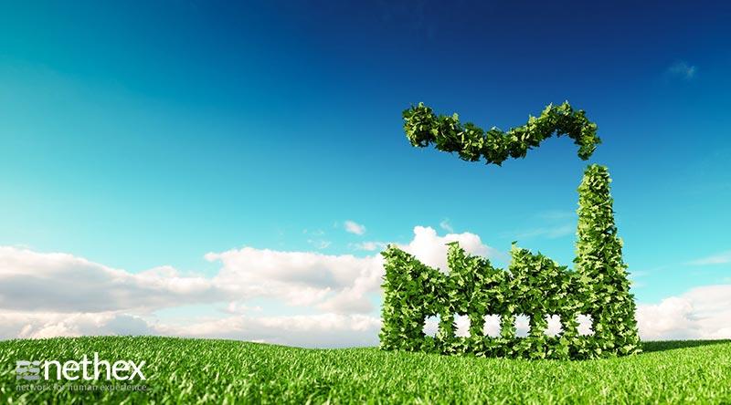 Ministero per la Transizione Ecologica, una speranza per l'impulso da tempo atteso ai tanti progetti di green economy delle imprese italiane
